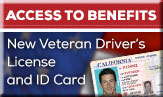 article/new-veterans-drivers-licenses-and-identification-cards-can-help-you-gain-access-benefits